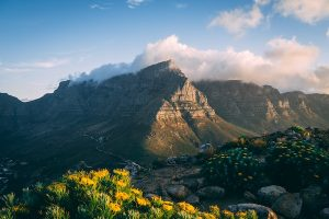 A locals guider to Cape Town