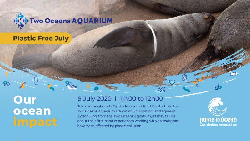 Aquarium webinar 2