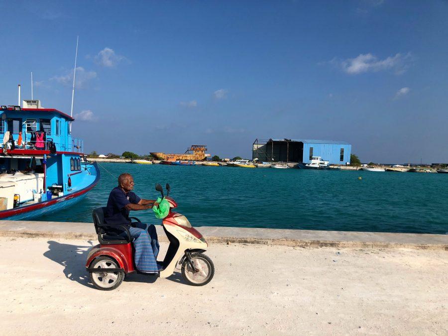 MALDIVES ALLISON FOAT