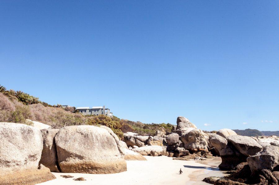Marine safari Tintswalo Boulders